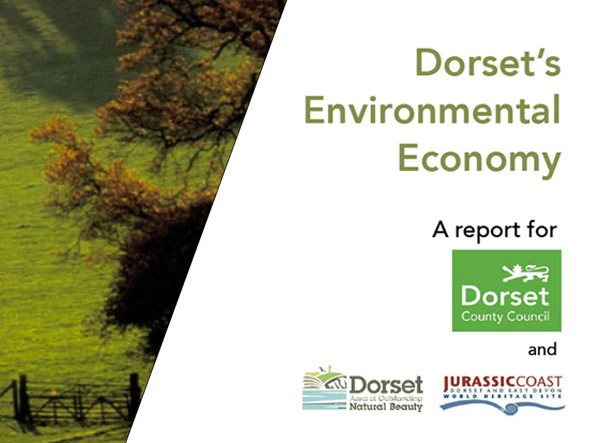 Dorset council report