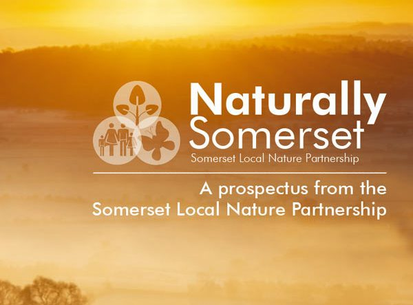 Naturally Somerset